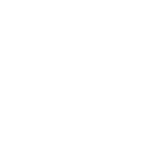 yhes-pelkka-logo-valkoinen-transparent